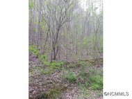 000 Wooded Mountain Trail Mars Hill NC, 28754