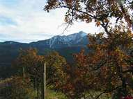 Tbd Cty Rd 14a Ouray CO, 81427