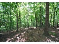 Lot 9 Galax Lane Brevard NC, 28712