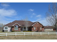 7956 Kit Fox Dr Wellington CO, 80549