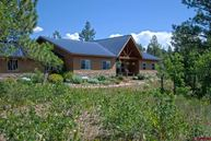 113 Big Sky Place Pagosa Springs CO, 81147