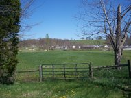 10- Lot Country View Ln Ghent KY, 41045