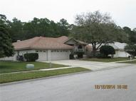 3981 Wellington Parkway Palm Harbor FL, 34685