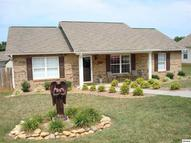 1032 Berry Trail Dr Sevierville TN, 37862