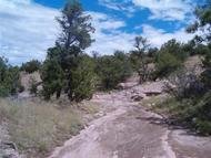 46 Abbe Springs Ranch Magdalena NM, 87825