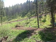 Lot 6 Flesher Acres Canyon Creek MT, 59633