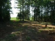 Lot D-1, F State Hwy 215 S Road Jenkinsville SC, 29065