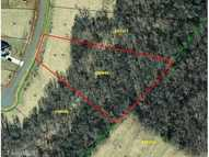 Lot 16 Fred East Pleasant Garden NC, 27313