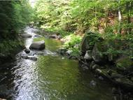 Lot 3a Bickford Woods Road Dorchester NH, 03266
