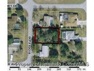 11283 Riddle Dr Spring Hill FL, 34609