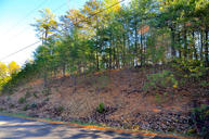 Bear Den Rd Townsend TN, 37882