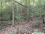Tract 21 On Fightingtown Creek Blue Ridge GA, 30513