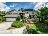 1609 Hampton Court Safety Harbor FL, 34695