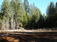 Lot # 1 Emigrant Trail Shingletown CA, 96088