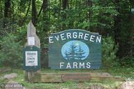 28 Evergreen Farms Drive Wardensville WV, 26851