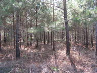 388 Acres Caney Church Rd. Lumberton MS, 39455