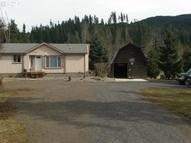 5391 Hwy 35 Mount Hood Parkdale OR, 97041