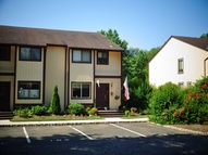 98 Chelsea Way Bridgewater NJ, 08807