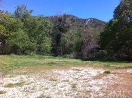 273 Valley Vista Drive Lytle Creek CA, 92358