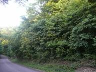 0 Harbor Pointe Dr (Lot 35) Silver Point TN, 38582
