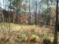 Lot #2 New River Mountain Estates Independence VA, 24348