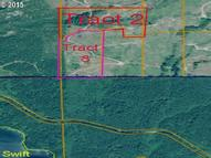 Tract 8 Elkview Cougar WA, 98616