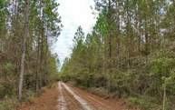 0 125th Road Mc Alpin FL, 32062