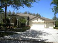 19333 Wind Dancer Street Lutz FL, 33558