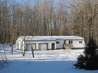 3763 Cr-447 Newberry MI, 49868