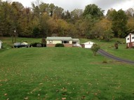 316 Little Grave Creek Road Glen Dale WV, 26038