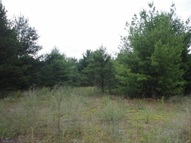 Lot 4 E Parkway Dr Coloma WI, 54930