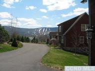 251 Mitchell Hollow Rd Windham NY, 12496