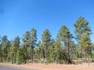4160 W Sugar Pine Loop Show Low AZ, 85901