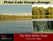 30295 Ne 99th Place Salt Springs FL, 32134
