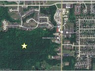50 Acres Pearl Rd Brunswick OH, 44212