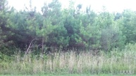 Lot 2 Maryland Lane Sunbury NC, 27979