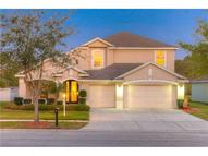 17207 Keely Drive Tampa FL, 33647