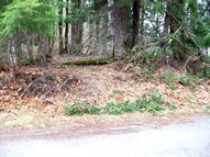 Lot #21 Holiday Lane Packwood WA, 98361