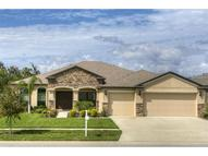 5304 Moon Shell Drive Apollo Beach FL, 33572