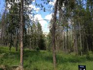 Lot 7 Windsong Way Alpine WY, 83128