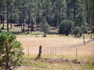 22 Upcher Rd Reserve NM, 87830