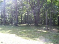 0 South Pines Road, Lot 4 Odessa NY, 14869
