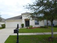 8440 Carriage Pointe Drive Gibsonton FL, 33534