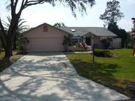 9540 Cypress Chase Ct Fort Myers FL, 33967