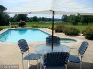 7552 Blueberry Acres Road Saint Michaels MD, 21663