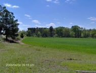 Tract A Newell Road (27+/- Acres) Byron GA, 31008