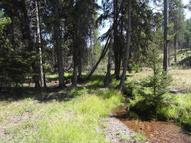 Lot 63 Drew Creek Loop Seeley Lake MT, 59868