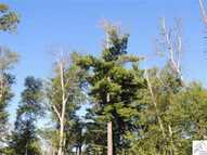 Lot 8 Squint Lake Rd Grand Marais MN, 55604