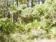 304 East Sawyer Saint George Island FL, 32328