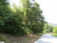 45 Foggy Cut Lane Section 8 Lot # 45 Landrum SC, 29356
